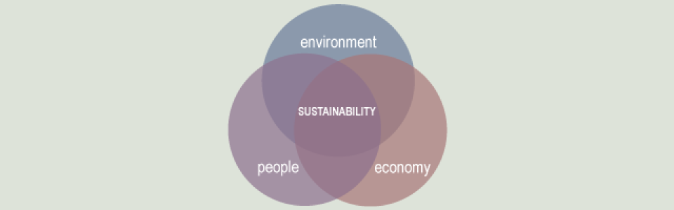 sustainability is where the environment, people and the economy meet